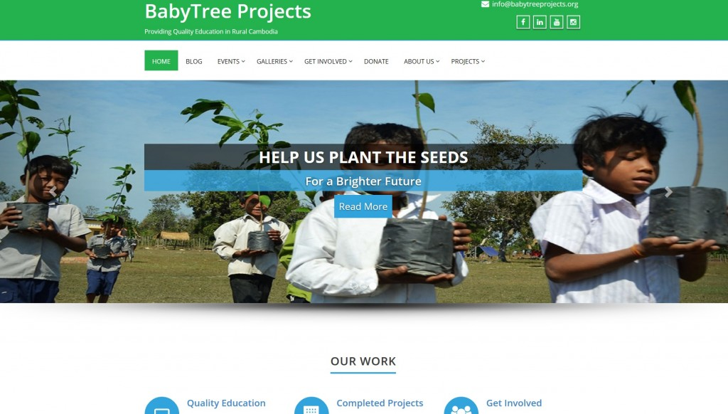 Babytree Projects